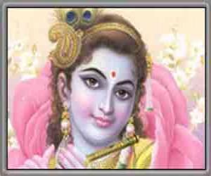 જય શ્રી કૃષ્ણ
