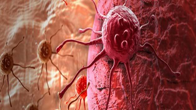 हीमोग्लोबिन क्या है, शरीर में