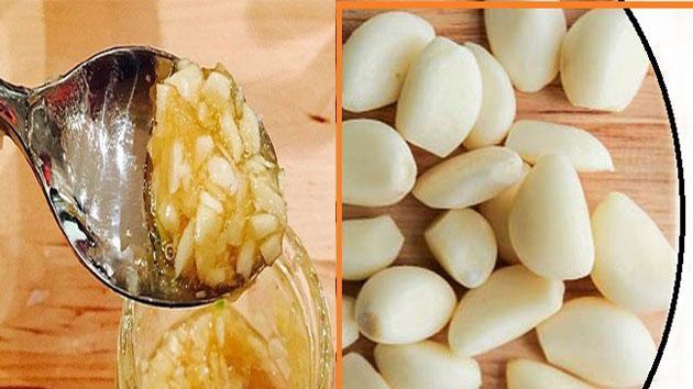 garlic-n-honey