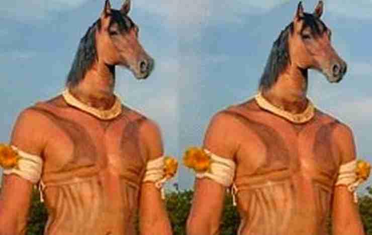History of horses mane