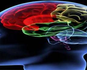 अमेरिकी अधिकारी चीन में 'रहस्यमय आवाज' का शिकार, चोटिल हुआ दिमाग