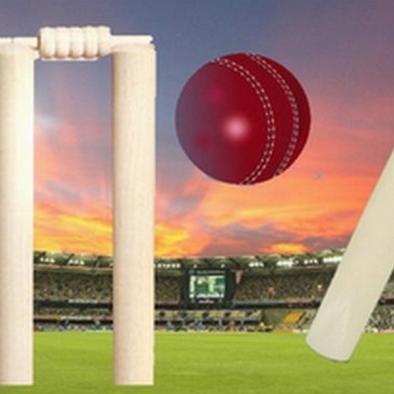 प्रवासियों के कारण स्वीडन में लोकप्रिय हो रहा क्रिकेट