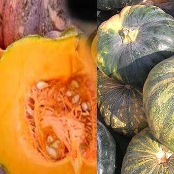 Pumpkin Seeds For Health : रोज खाने चाहिए कद्दू के बीज, बहुत काम की है ये चीज