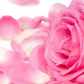गुलाब जल गर्मियों में सेहत और सुंदरता  का सच्चा साथी