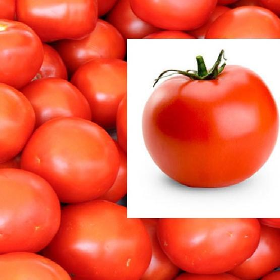 Benefits Of Tomato Juice : सेहत और सौंदर्य के लिए बहुत फायदेमंद है टमाटर का जूस, जानिए फायदे
