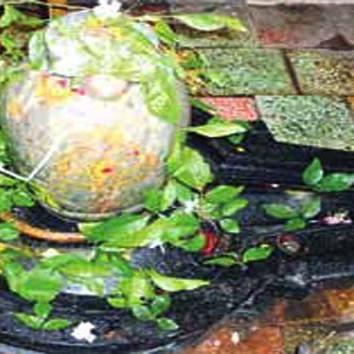 श्रावण मास 2021: भोलेनाथ को क्यों नहीं चढ़ती है मेहंदी, हल्दी और तुलसी