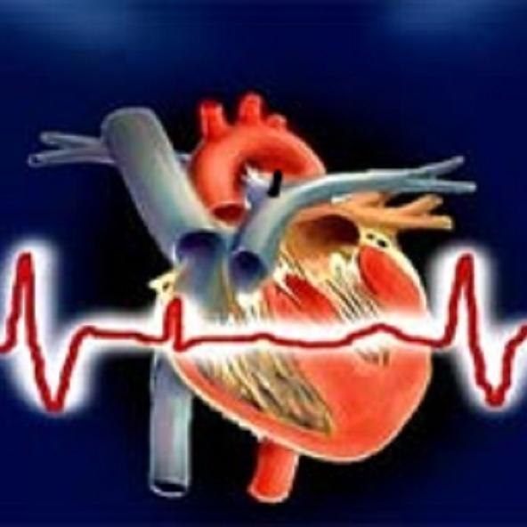 Expert Advice : दिल का दौरा पड़ने पर कैसे बचाएं जान, जानें CPR ट्रेनिंग के बारे में