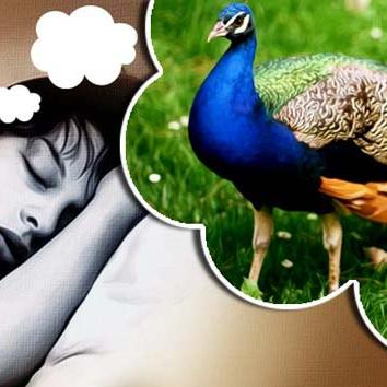 विश्व स्वप्न दिवस : कहीं आपको भी तो नहीं आ रहे धन के सपने, सपनों से जानिए कब मिलेगा धन