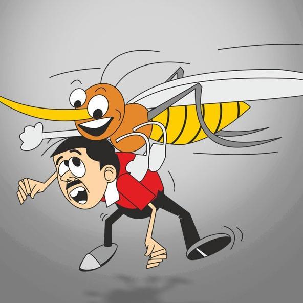 आखिर क्या है डेंगू, कैसे फैलता है और कैसे इससे बचा जा सकता है?