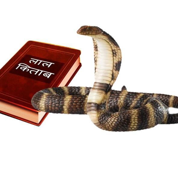 कालसर्प दोष के कारण, लक्षण और लाल किताब के अचूक उपाय