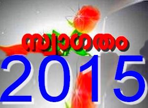 പുതുവര്ഷം , 2014 , 2015 വര്ഷം , ന്യൂ ഇയര്