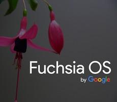 google, fuchsia, os, smartphone, tablet ഗൂഗിള്, ഫുച്ഷ്യ, ഒഎസ്, സ്മാര്ട്ട് ഫോണ്, ടാബ്ലെറ്റ്