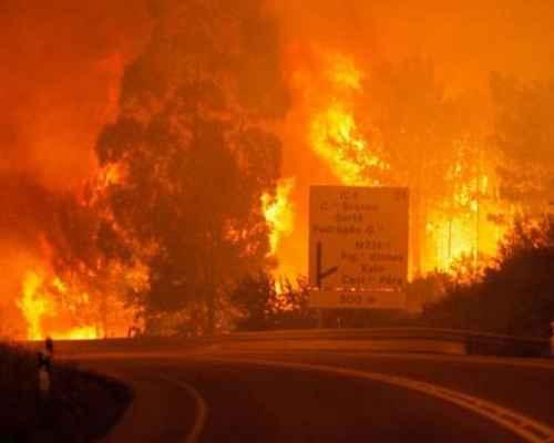 FOREST FIRES, PORTUGAL, കാട്ടുതീ, അപകടം, മരണം