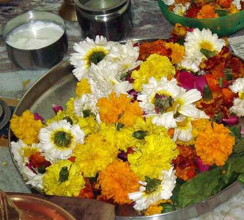 aathmiyam ,  flowers ,  pooja , ആത്മീയം ,  പുഷ്പങ്ങള് ,  പൂക്കള് ,  പൂജ