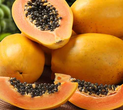 papaya ,  diabetics ,  wounds ,  പപ്പായ , പ്രമേഹം , പ്രമേഹ രോഗി , മുറിവ്
