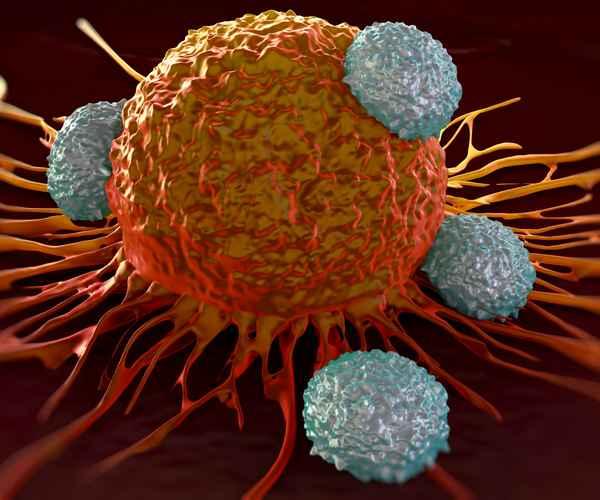 Cancer  , Cancer Symptoms , Human Body , Prevention ,  Health , Health Tips , കാന്സര് , ആരോഗ്യം , ആരോഗ്യ വാര്ത്ത , കാന്സറിന്റെ ലക്ഷണങ്ങള്