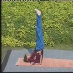yoga vipritkarni aasan
