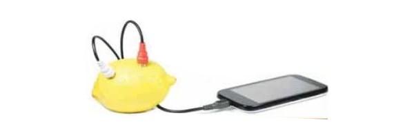 lemon charger