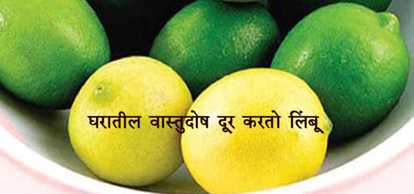 vastu lemon
