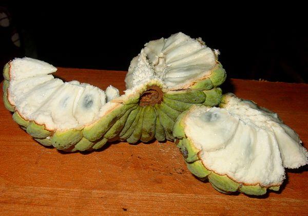 सीताफल : स्वादिष्ट मीठे फल के 10 गुण