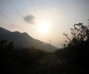 தெங்கு மரஹாடா