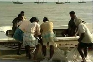 indian fisherman