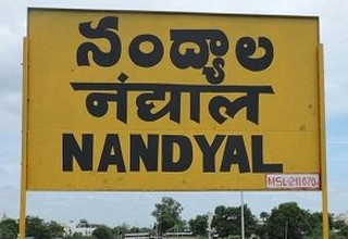 nadyal by poll