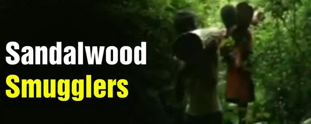 sandalwood smugglers